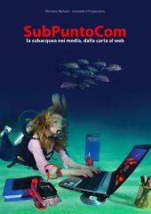 2013 subpuntocom