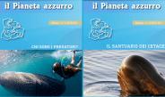 """I nuovi numeri di PAZ: """"Chi sono i predatori?"""" e """"Il santuario dei cetacei"""""""