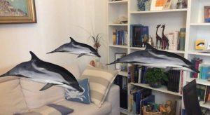 Anche Digital Whales resta a casa…con te