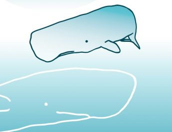Whole in a whale