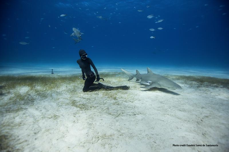 Partita la II edizione dell'Oceans Film Festival Italia