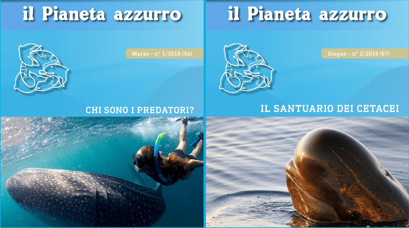 """""""Chi sono i predatori?"""" e """"Il santuario dei cetacei"""""""