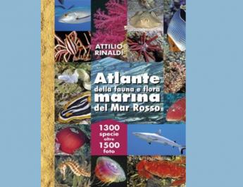 Atlante della fauna e flora marina del Mar Rosso: 1300 specie oltre 1500 foto